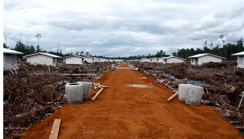 Transmigrasi-Siedlung im Aufbau