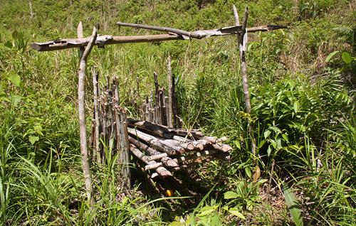 Eine Affenfalle am Rand des Reisfelds.