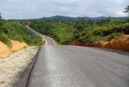 Der zukuenftige Transborneo-Highway
