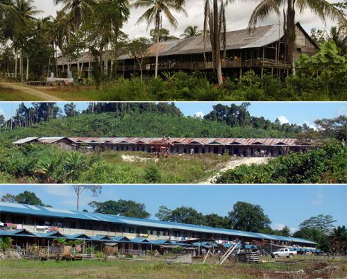 Langhaeuser in Kapuas Hulu