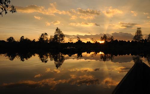 Abendstimmung am Danau Sentarum