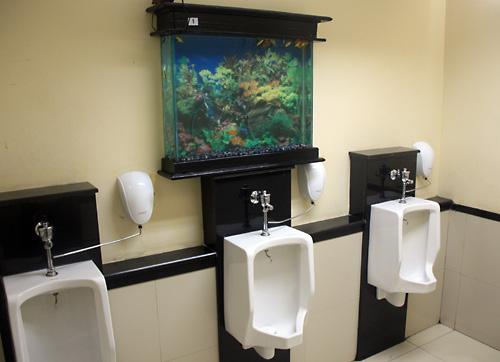 Aquarium in der Herrentoilette des Jakartaer Flughafens.