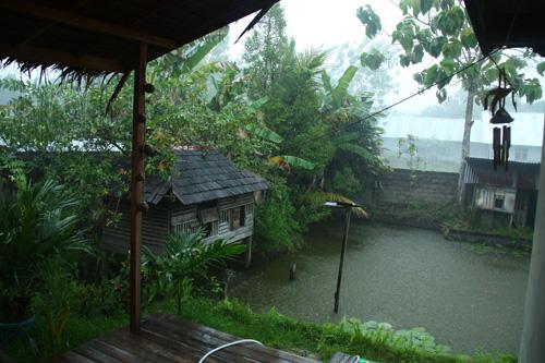 Regenguss in meinem Garten in Putussibau.