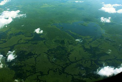 Wald und Wasser dominieren (noch) das Landschaftsbild von Kapuas Hulu.